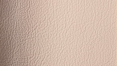 Leather / W054