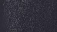 Leather / Z013