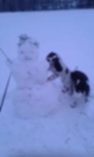 lumiukko_n.jpg