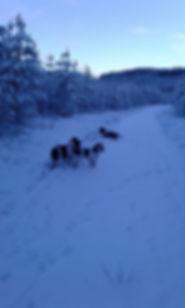 kaikki lumessa_n.jpg