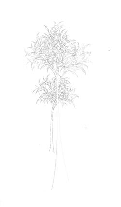 Desiertos Ajardinados III