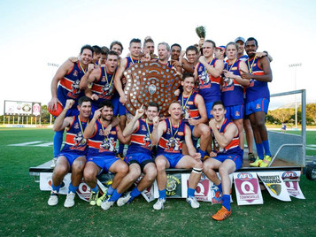 Dogs trounce Tigers to finish perfect year