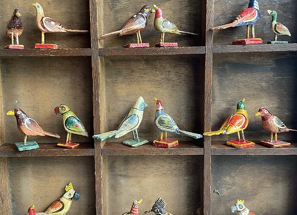 Nirmal Birds