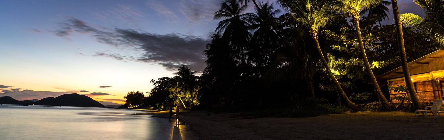 Sundusk-Palm-trees-beach.jpg