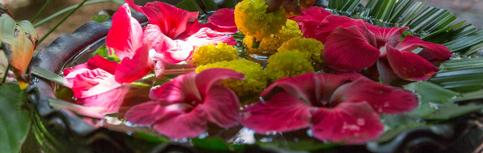 Samahita-flowers.jpg