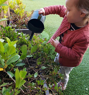 Child is pouring plants