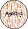 Ageistry Website Logo 2.png