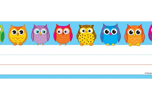 Colorful Owl Desk Name Tags