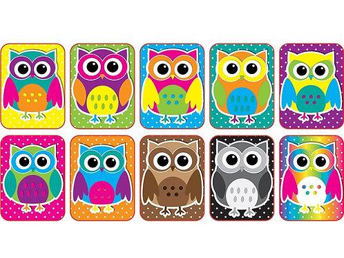 Color Owls Dry Erase Erasers