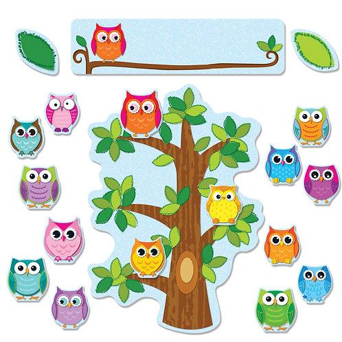 Colorful Owl Behavior