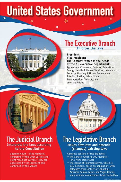 Branches of Government Smart Chart