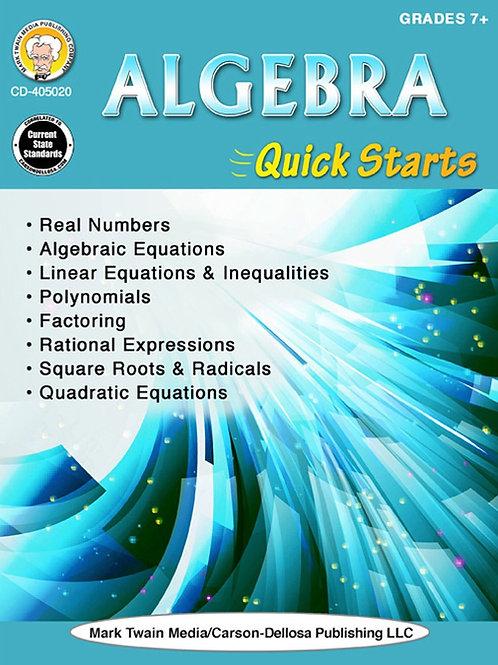 Algebra Quick Starts Workbook