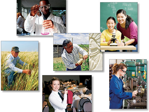 Occupations & Careers Photo Language Cards