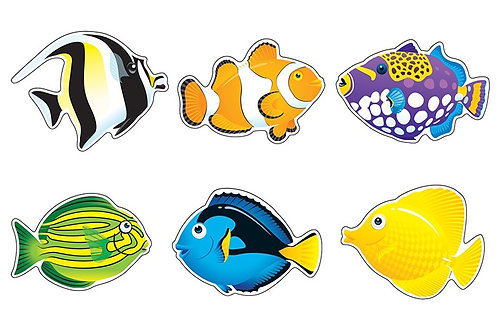 Fish Friend Accents