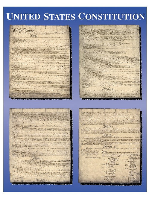 United States Constitution Chart
