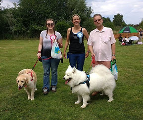 Cambridge puppy training dog show.jpg