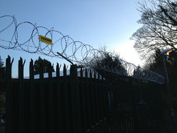 Allotment Barbed Wire