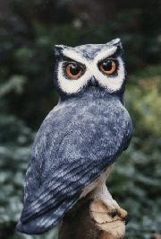 scops owl sculpture