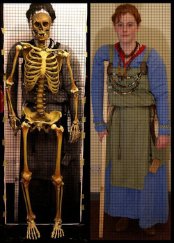 Viking skeleton for Jorvik