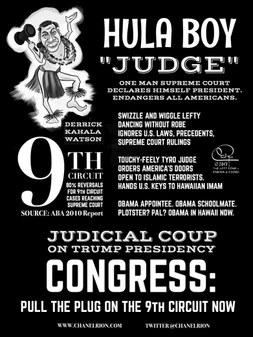 9th Circuit Hula Boy Judge