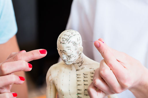 alternative-practitioner-explaining-acup