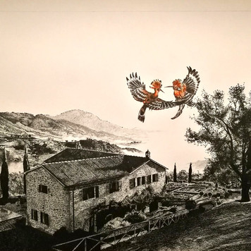 Home in Tuscany with Hoopoe Birds