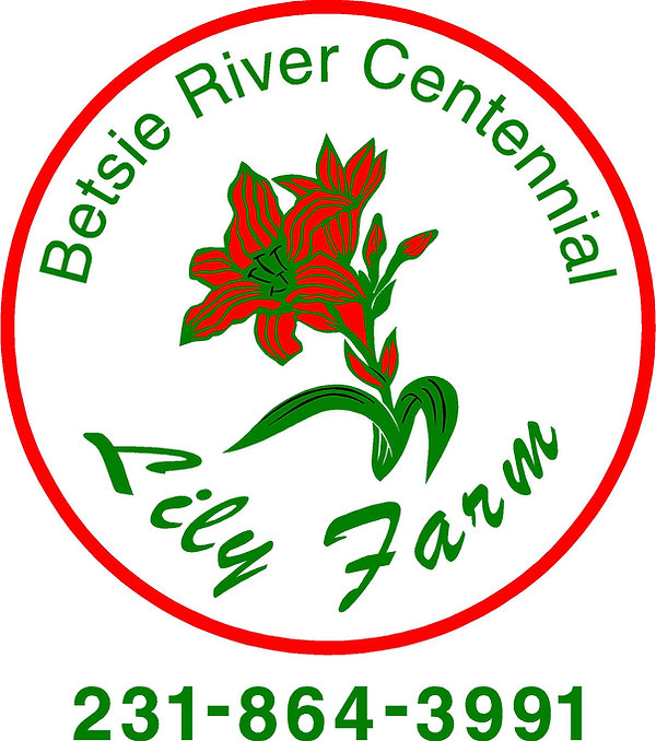Betsie River Lily.jpg