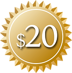 $20 Gold Sticker.png