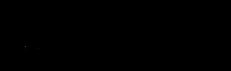 BSLIQ Logo Horizontal 2020.png