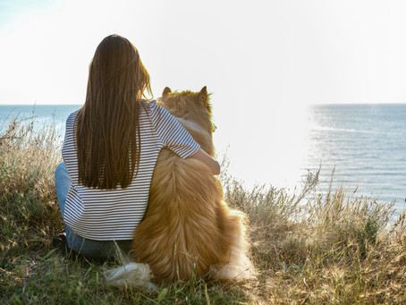 Taking Time to Breathe – 3 Steps to Bring Instant Calm to Chaos
