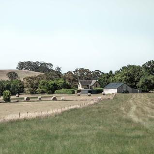 Daylesford Hay Bales