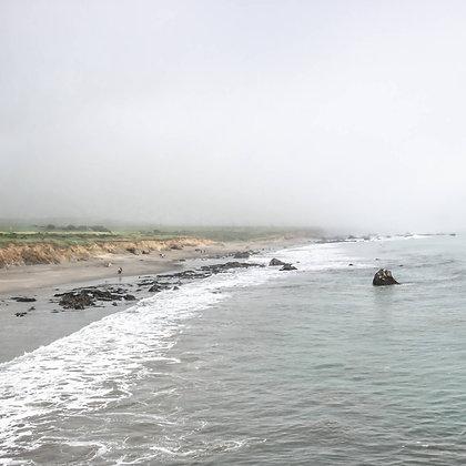 Sea to Shore
