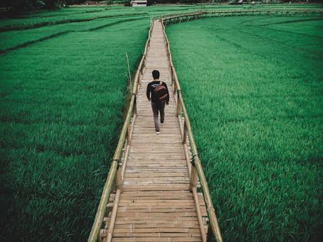 Bridge to your new reality
