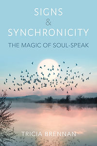 Signs & Synchronicity Book
