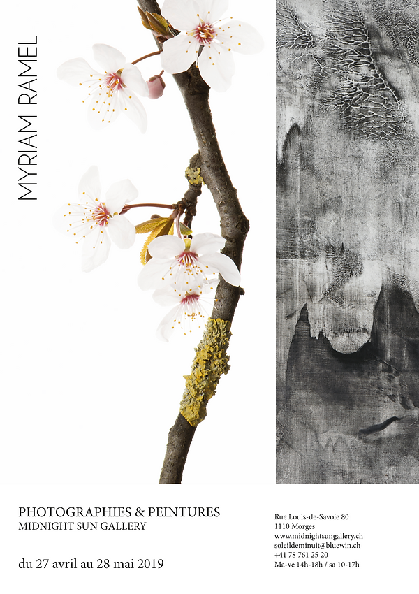 Affiche Myriam Ramel expo galerie Soleil