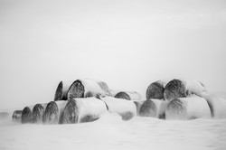 Bales-of-Hay-out-in-the-Snow