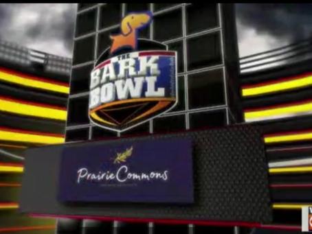 Bark Bowl 2021