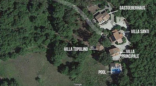 Google Maps View.jpg