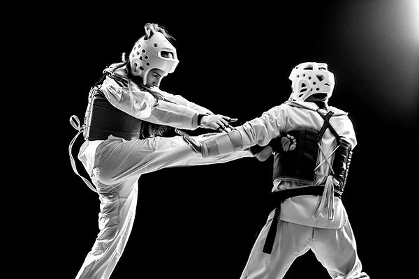 taekwondo_flying_kick_0,5x.jpg