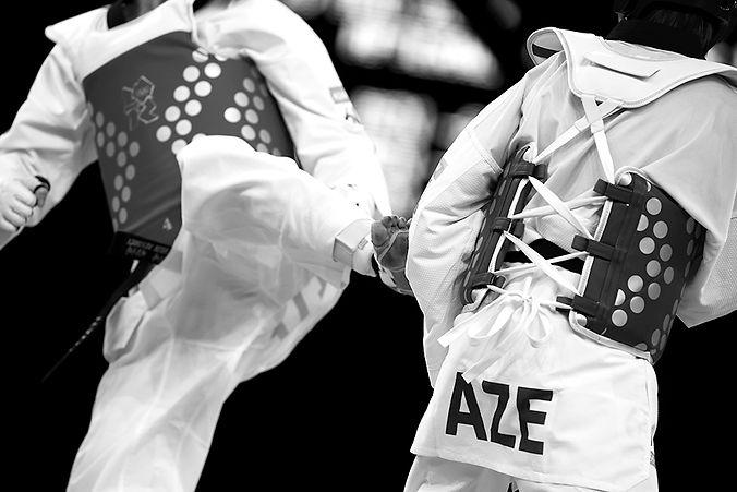 taekwondo_kick2_0,5x.jpg
