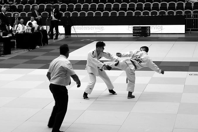 ju-jitsu-judge_0,75x.png