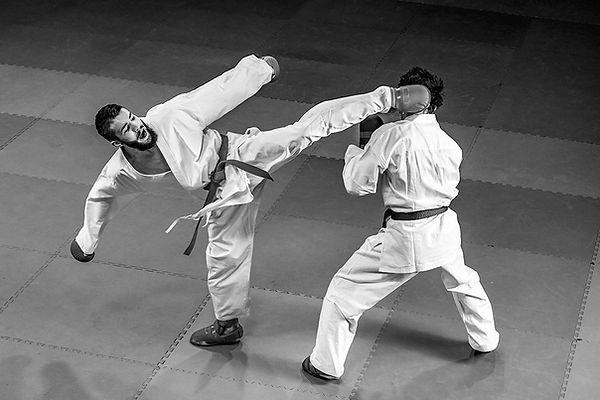 karate_kick_head_0,5x.jpg