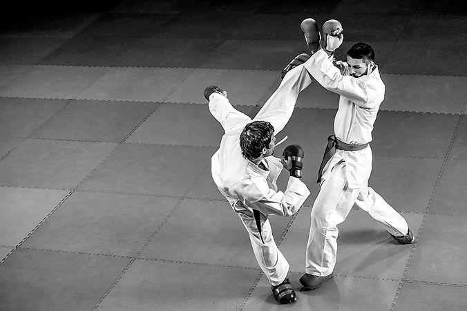 karate_kick_block_0,5x.jpg
