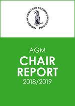 AGM CHAIR REPORT 2018:19.jpg