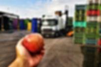apple.jpeg