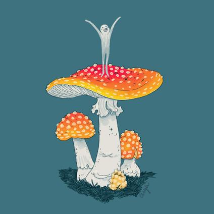mayshroom 1 fly agaric.jpg