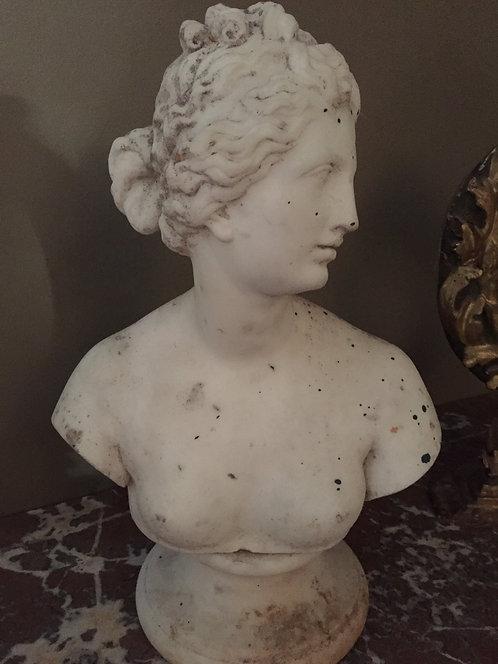 19th Century Marble Bust of Venus