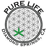 pure_life_collective_canorml_logo-scaled.jpg