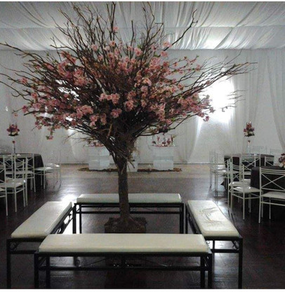 árvore no centro do salão