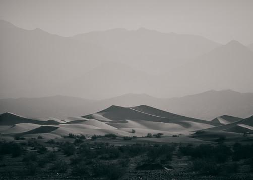 PORTRAIT OF LANDSCAPE